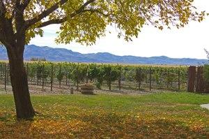Churchill-vineyards-fallon